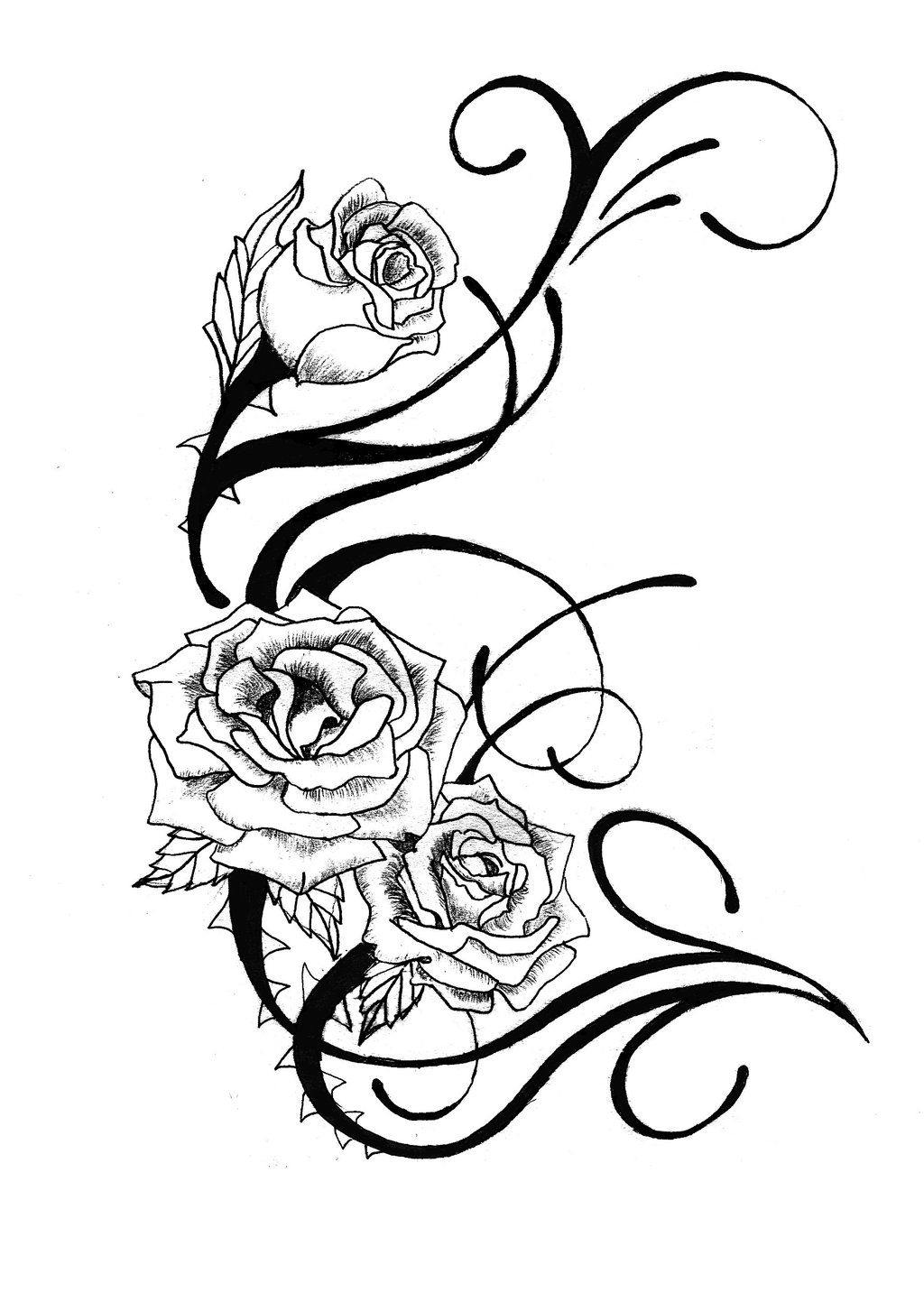 Rose Drawing Outline | Free download best Rose Drawing ...
