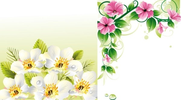 Red Border And Pink Flowered Clip Art