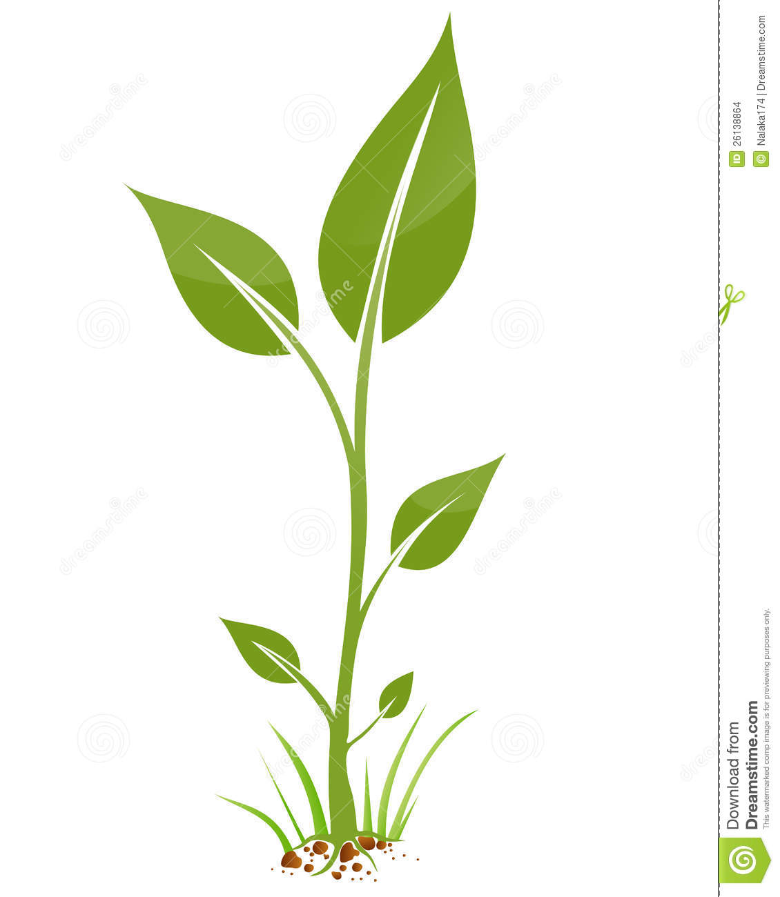 Pepper Plant And Art Black Bell Clip White