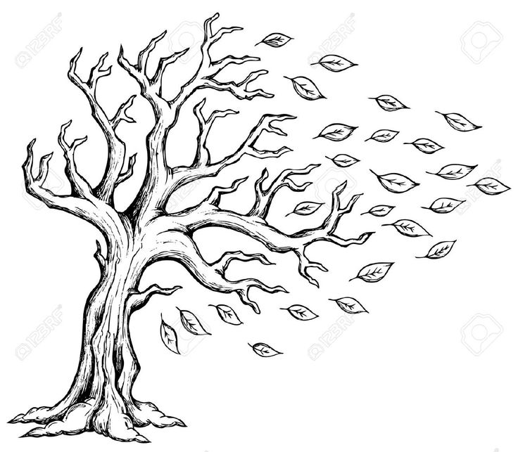 Family Trees Roots Drawing