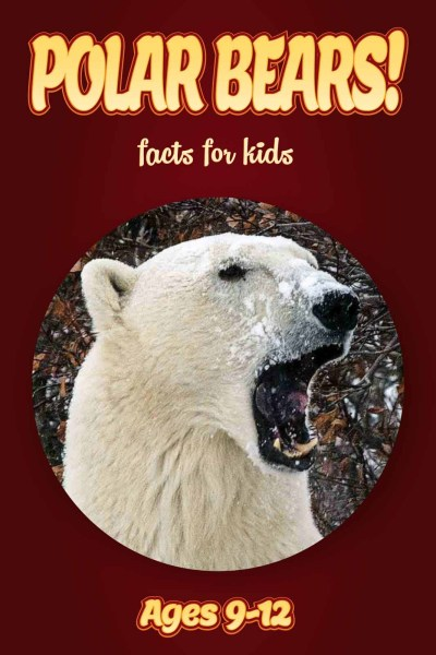 Kids Non Fiction Books   Ages 9 12 Archives   Non Fiction Books For     Polar Bear Facts     Kids Non Fiction Book  Ages 9 12