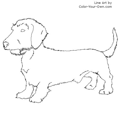 dachshund coloring pages # 59