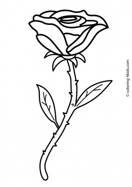 Flowers Coloring Pages Free Printable Colored Books With