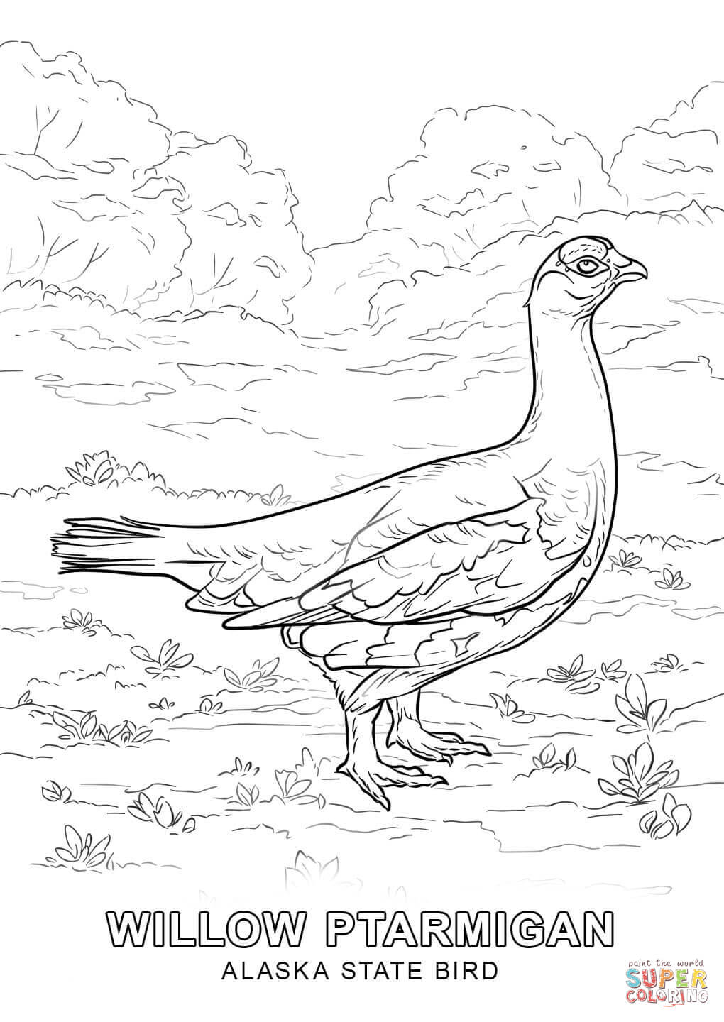 Alabama state bird coloring page coloring home, fun coloring pages