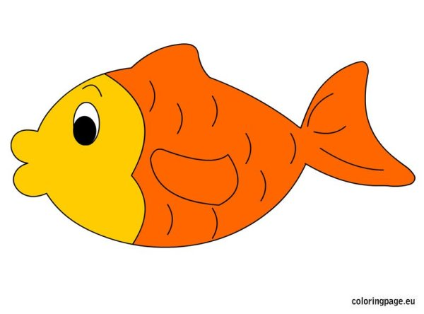 goldfish coloring page # 74