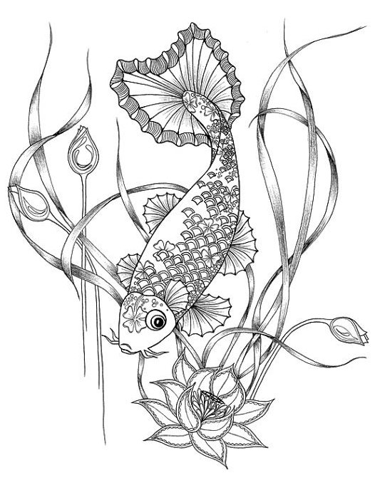koi fish coloring pages # 47