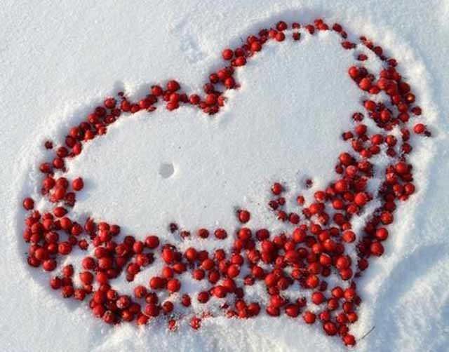 serdce na snegu