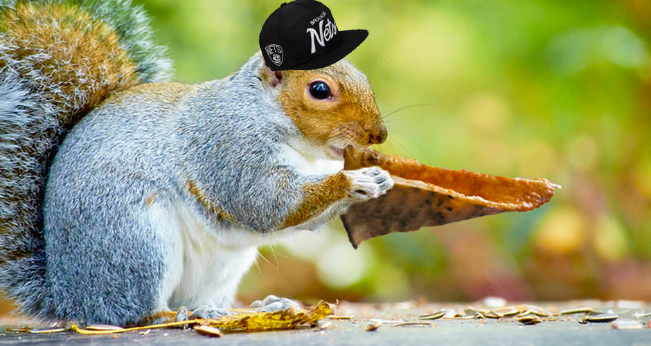 Pizza Eating Squirrel Flying