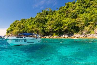 Phi Phi Islands - What to Do in Phi Phi Island - Phuket 101
