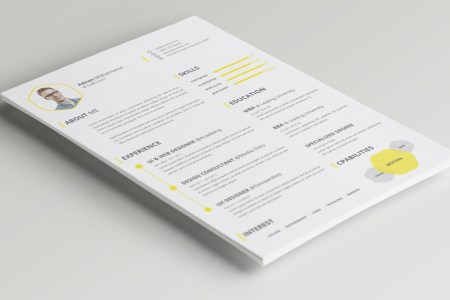 Top 35 Modern Resume Templates to Impress any Employer   WiseStep cv resume template