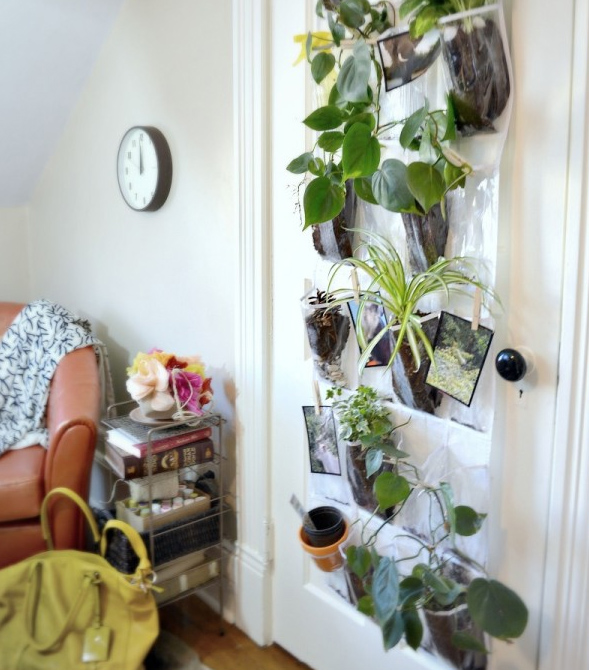 Hanging Planters Indoor Wall