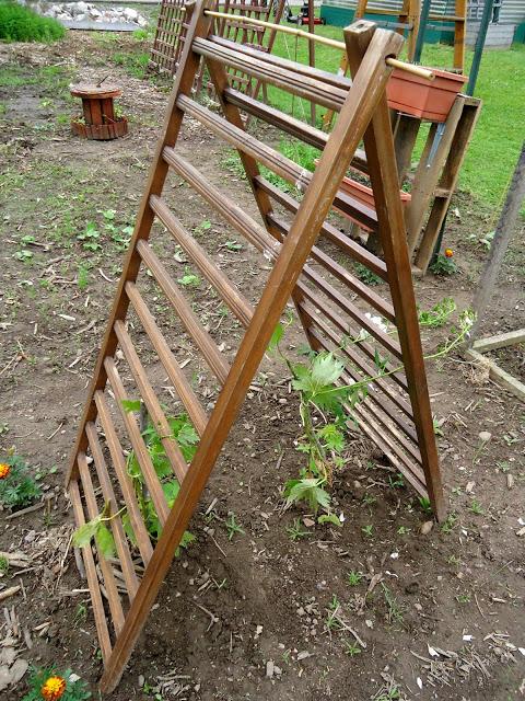 Raised Make Your Own Garden
