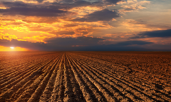 Envs 2060 Soil Science Open Learning And Educational Support