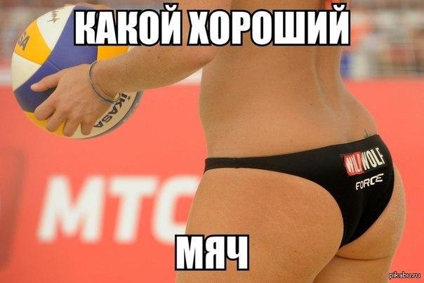 women's volleyball - HD1300×866