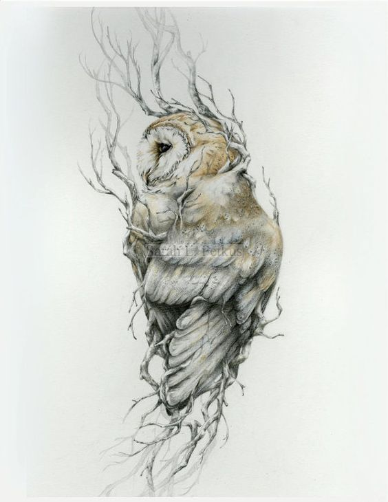 barn owl tattoo - HD1159×1500