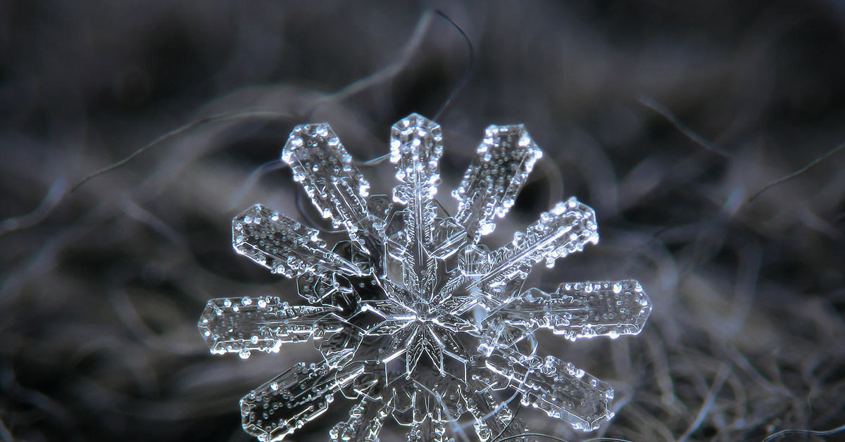 images of snowflakes - 736×552