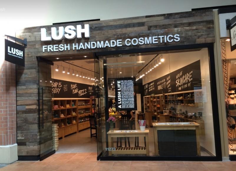 Cosmetics Lush Fresh Homemade