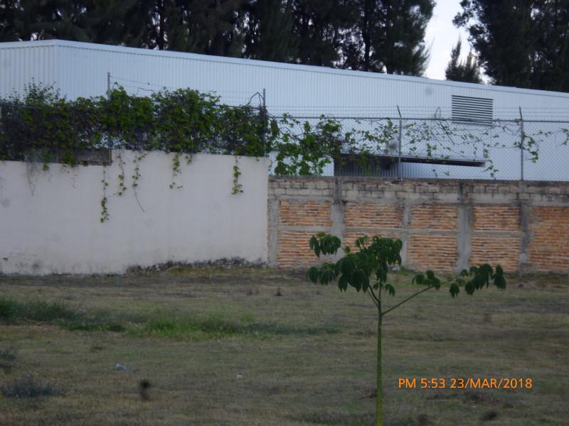 Terreno En Venta En Lopez Mateos Sur 6433 Arbolada
