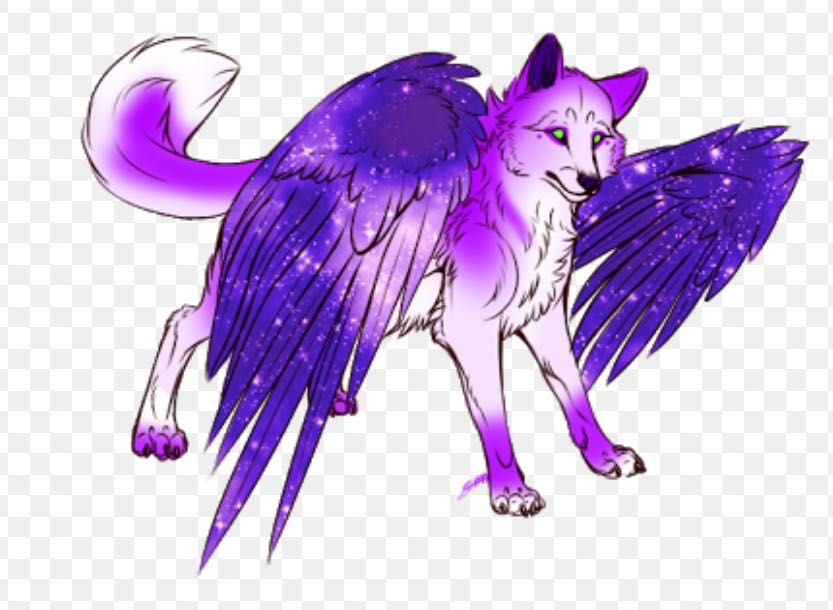 Adoptable's! (CLOSED) - Purple winged wolf - Wattpad