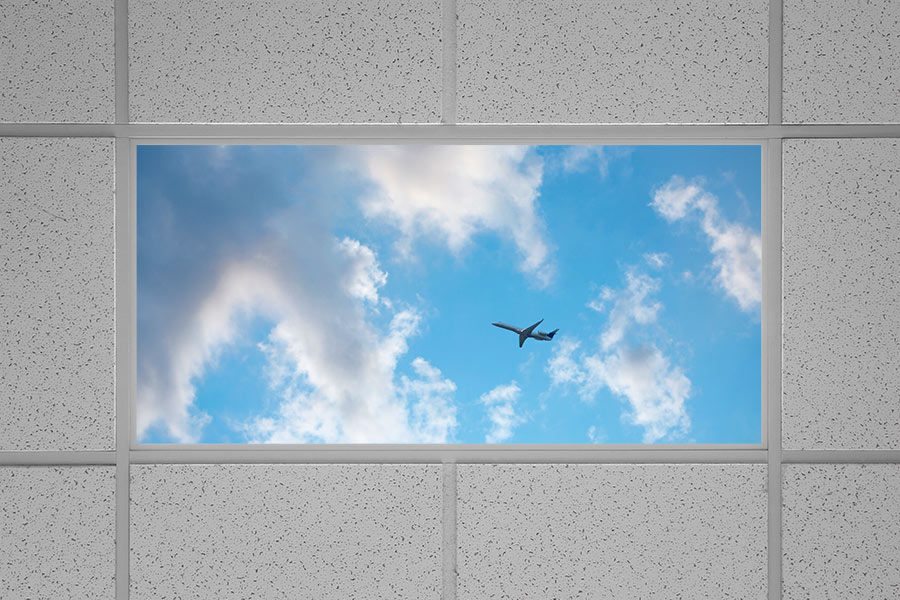 LED Skylight w  Jet Set Skylens       2x4 Dimmable LED Panel Light     Even Glow LED Panel Light   Jet Set LUXART Print   Dimmable   2  x 4    Installed in Drop Ceiling