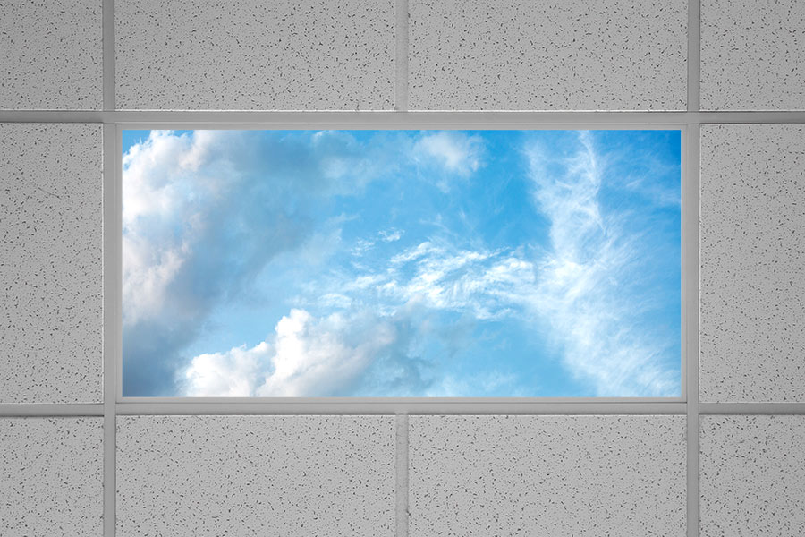 LED Skylight   2x4 Dimmable Even Glow     LED Panel Light w  SkyLens     Even Glow LED Panel Light   Summer Sky LUXART Print   2  x 4 Even Glow LED Panel  Light   Summer Sky LUXART Print   2  x 4   Installed in Drop Ceiling