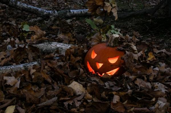 free halloween music # 54