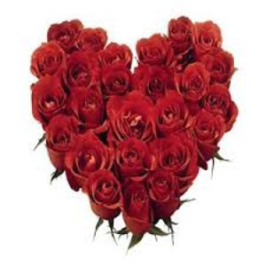 Online Flowers to India  Send Flowers Online India  Deliver Roses to     Same Day Flowers to India