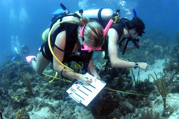 How Many Years Training Does It Take Be Marine Biologist