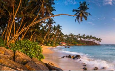 15 Stunning beaches in Sri Lanka that will make you go 'wow'!
