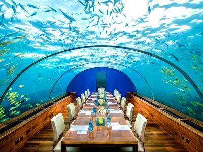 5 Underwater Restaurants In Maldives You Can't Miss