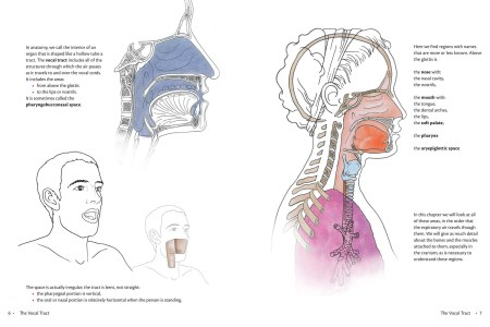 interior anatomy of nose » Full HD MAPS Locations - Another World ...