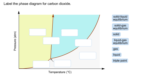 Carbon Dioxide Phase Diagram For The Label
