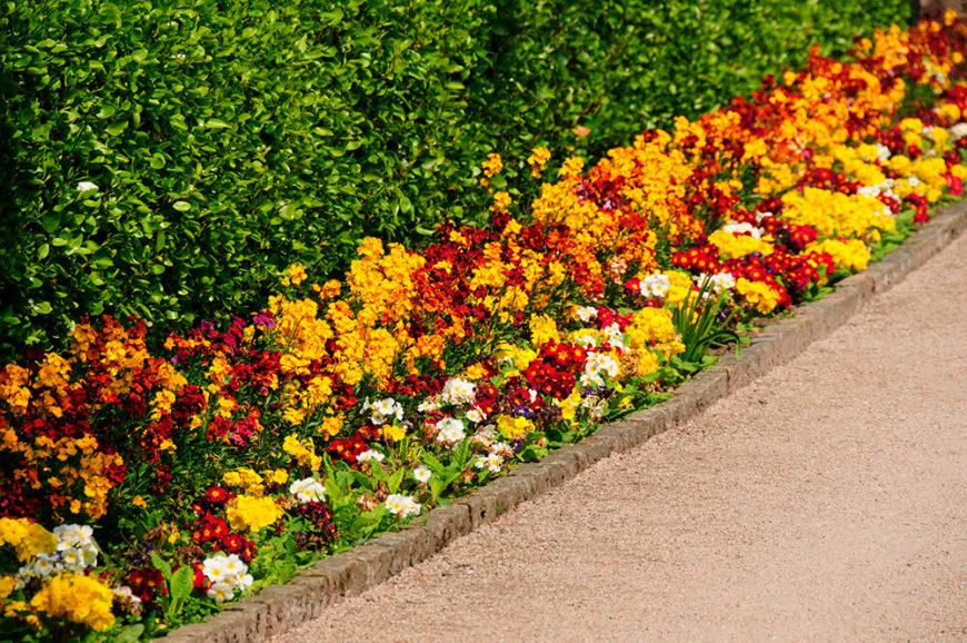 Small Back Garden Ideas