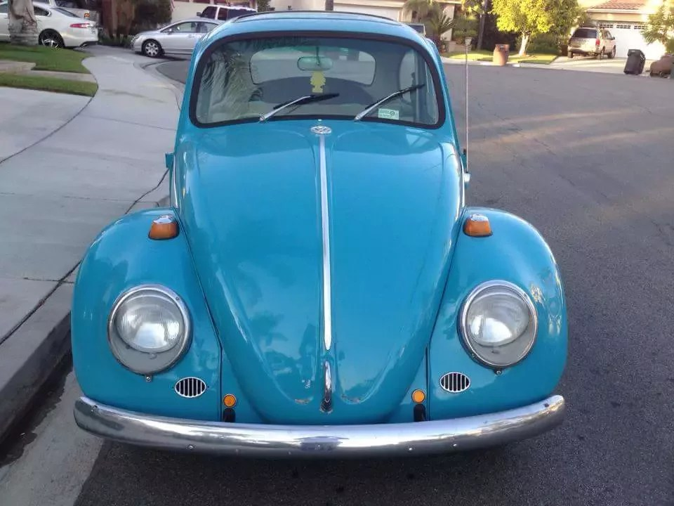 1965 Volkswagen Beetle Classics for Sale   Classics on Autotrader 1965 Volkswagen Beetle for sale 100966732