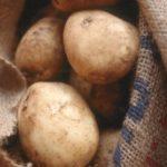 Картофель Полонез