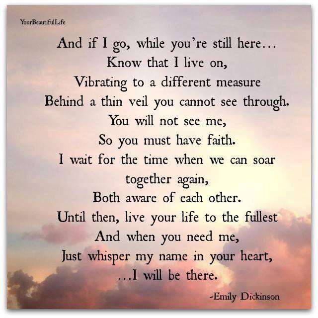 Do You Believe Love First Sight Quotes