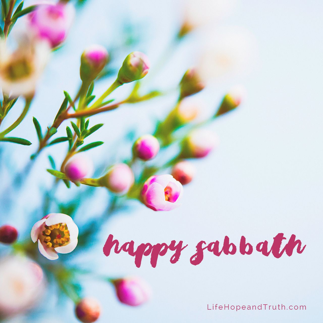 Quotes Happy Images Sabbath And
