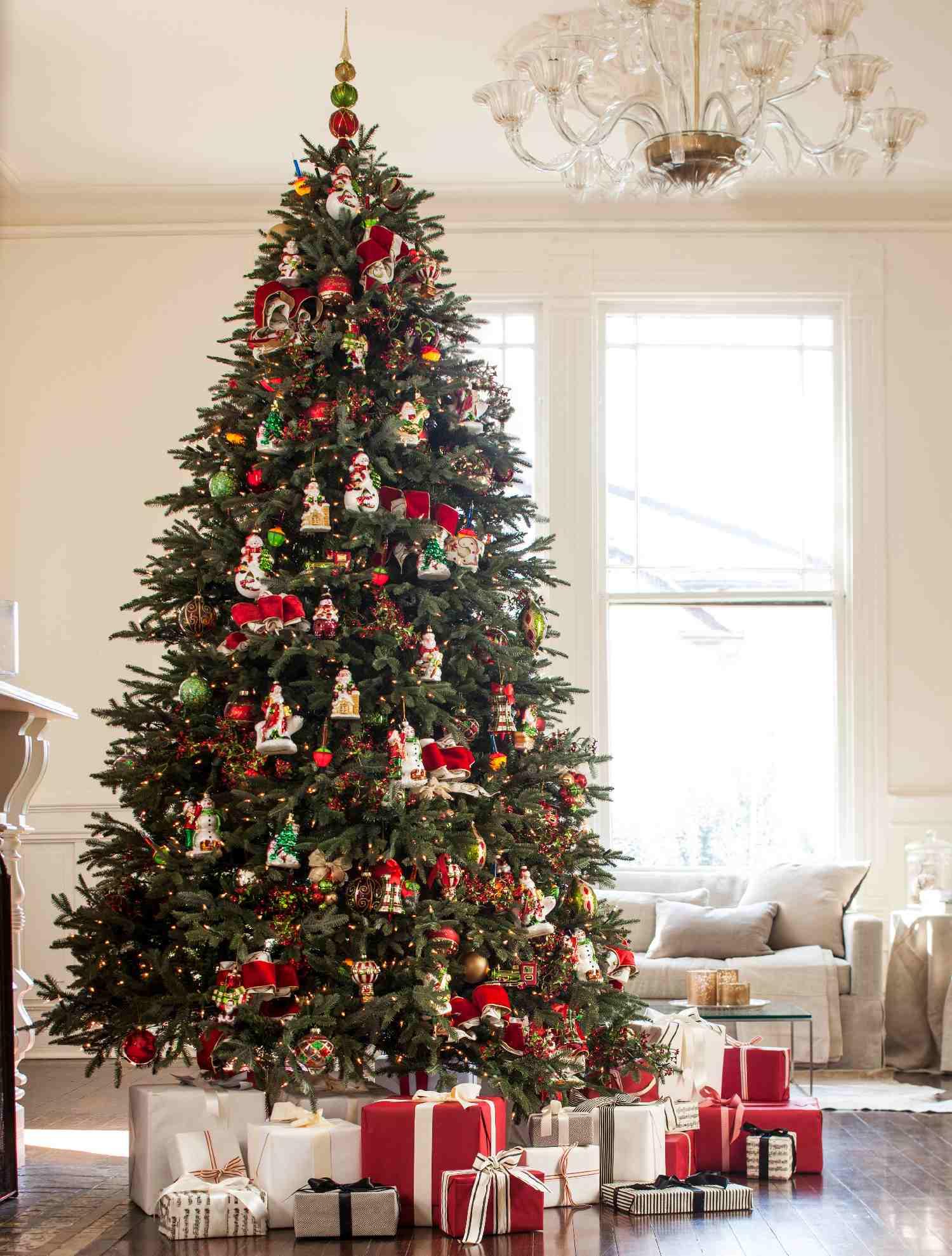 Unique Fraser Fir Christmas Tree
