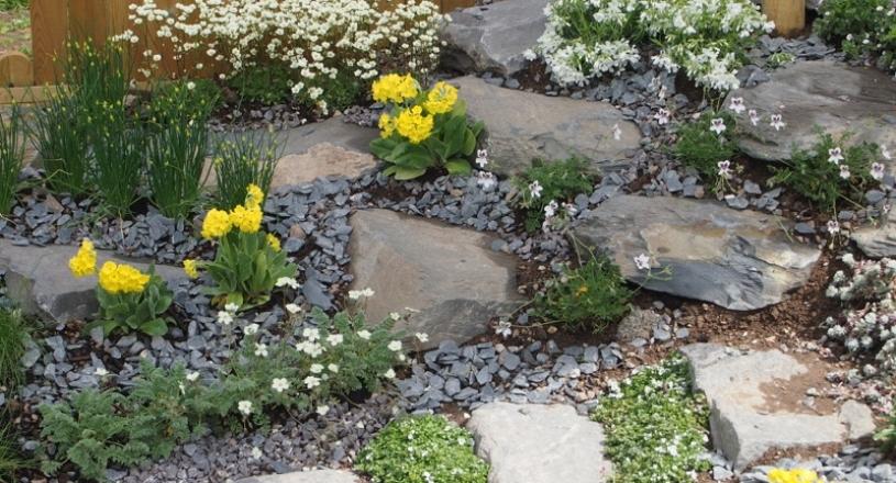 Buy Garden Rocks Online