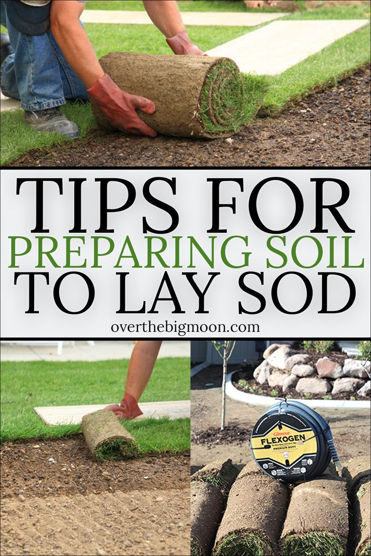 Gardening and Outdoor Decor   Tips and Tricks for preparing your     Gardening and Outdoor Decor   Tips and Tricks for preparing your soil  before laying new sod  Making sure the