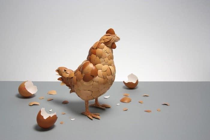 Arca: ayam jantan dari telur dari telur