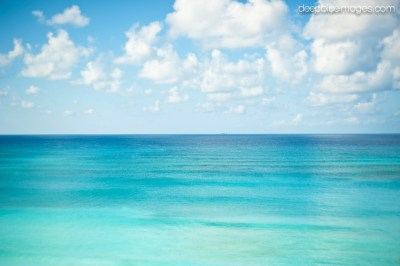Island Images - Grand Cayman Photography   Deep Blue Images
