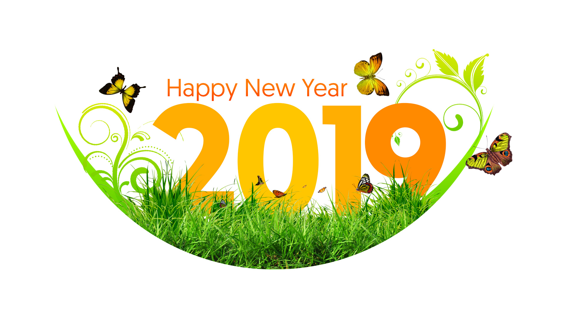 Happy New Year 2019 New Year Greeting Card New Year Wishes