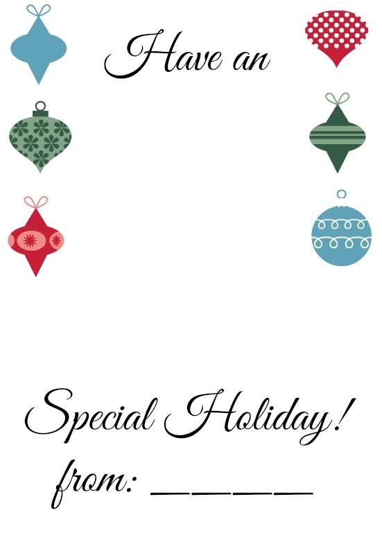 Extra Special Holiday (1)