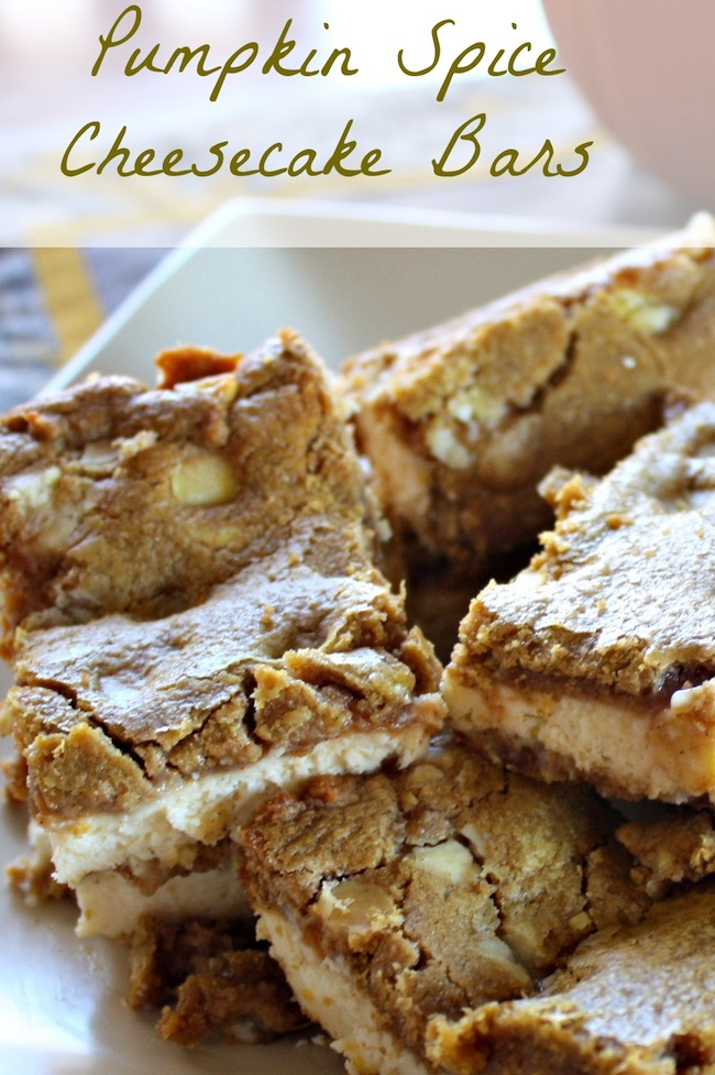 Pumpkin Spice Bars - Easy 2 ingredient recipe