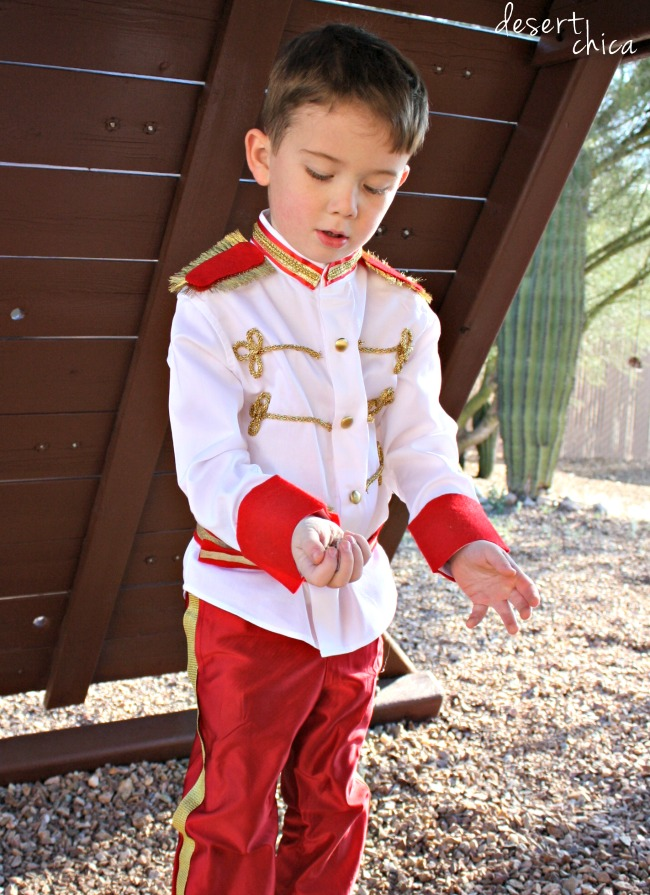 Need an adorable prince costume for your favorite little (or big) guy? Check out this no sew Prince Charming costume tutorial. It's an easy DIY, perfect for Halloween or a trip to Disney World.