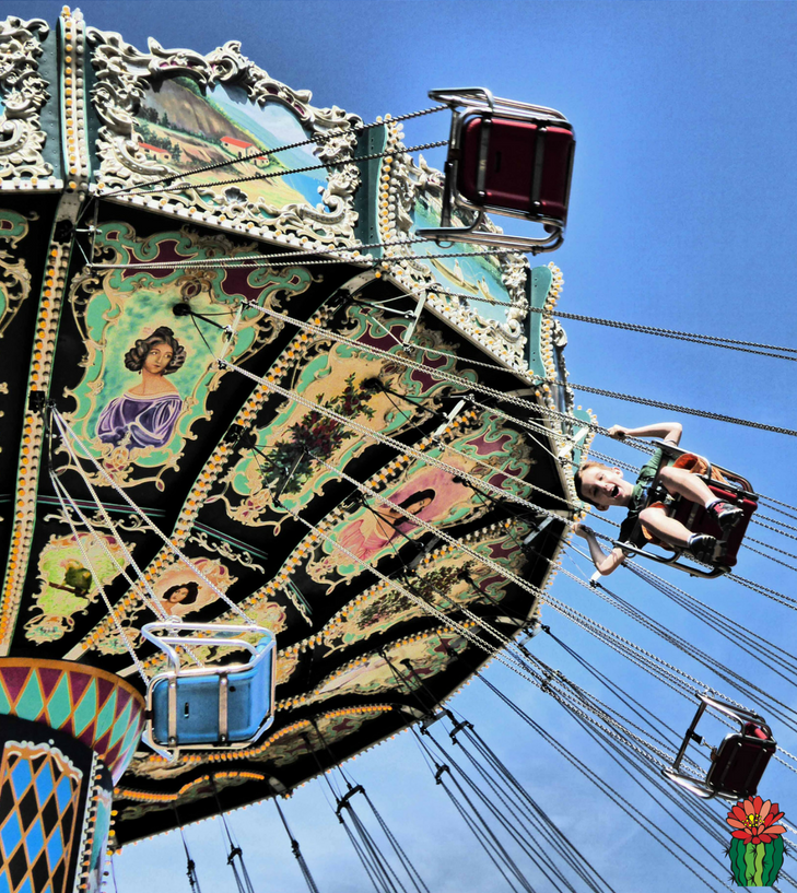 The best family activities in Southern California include theme parks, dinner shows, and animal encounters. There are plenty of things to do from Los Angeles to San Diego with kids. When you plan your bucket list road trip to California, check out these activity suggestions for families.