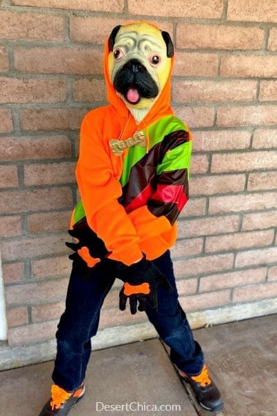 orange hoodie dog costume