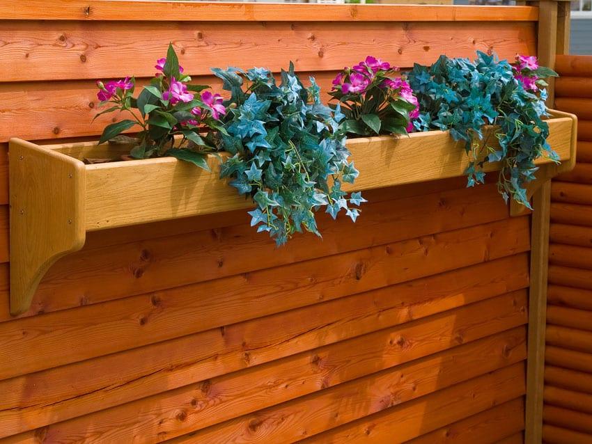 Shallow Terracotta Planters