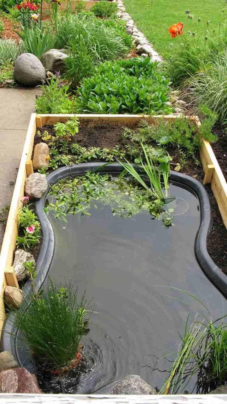 Mini Koi Pond Design